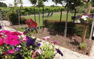 Garden to Vineyard