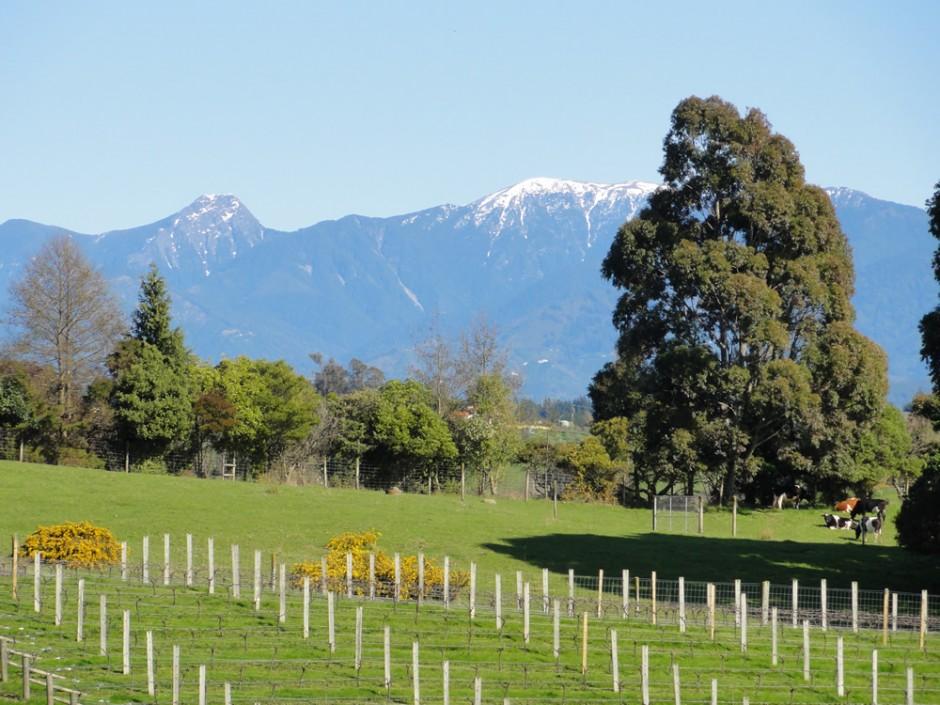Westward View – Mt. Crusader