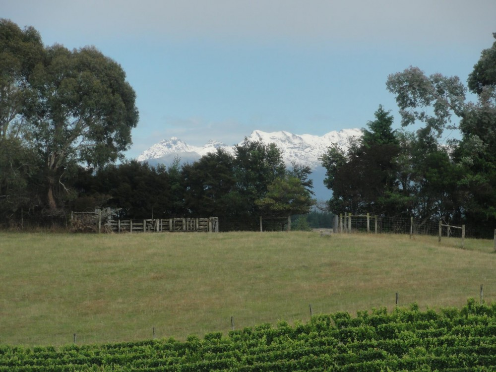 Snow_Capped_Mountain