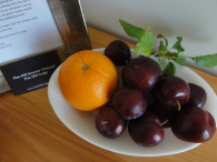 Home Grown Plum