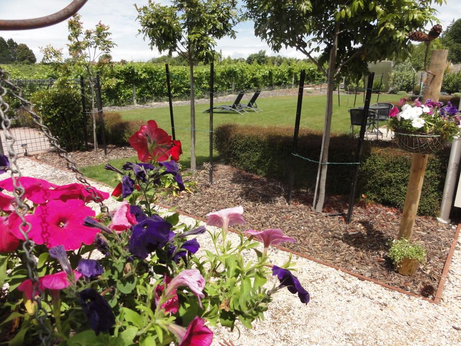 Garden to Vineyard